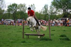 el berrueco caballos dsc 0110