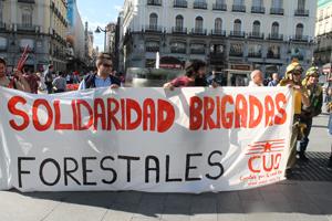 BrigadasforestalesIMG 2726