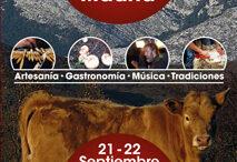 Festival13sept