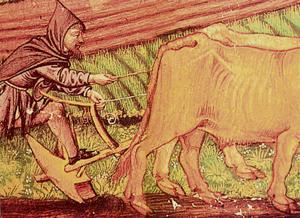 campesino192