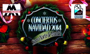 CartelConciertoVilla14