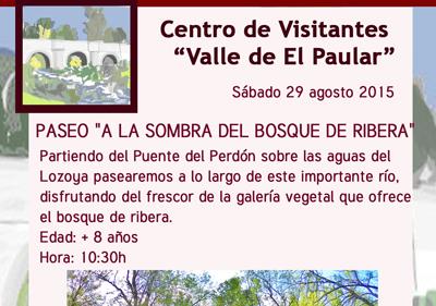 CVVallePaular14