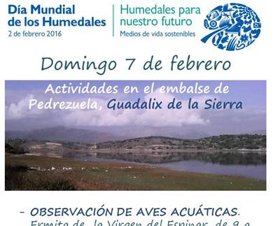 Humedales217