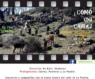 CUCabra CARTEL23