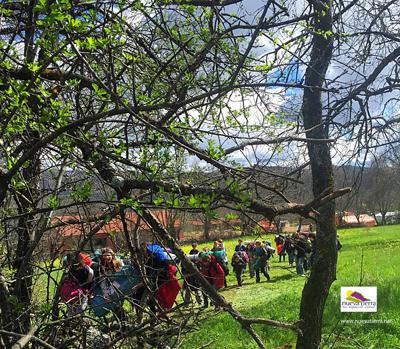 Scouts NuevaTierra3