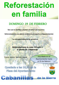 CabanillasReforestacionfamiliar17