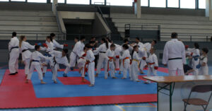 ActBuitragoKarate MG 9007