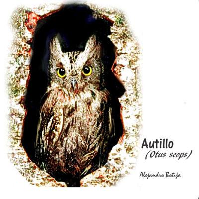 Autillo17