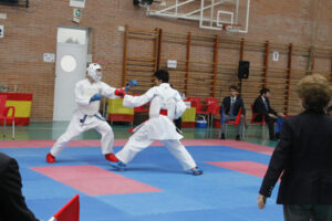 Karate MG 8025