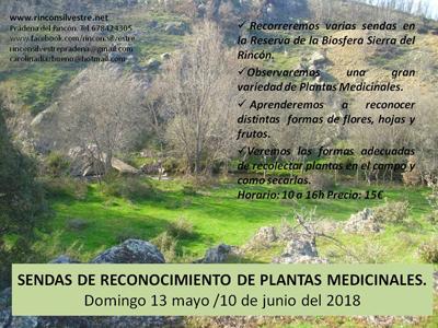 PlantasMedicinalessendas2018