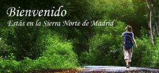 SierraNortecartel6may