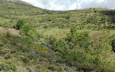 HiruelaVistacampo18