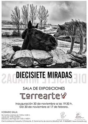 DIECISIETE MIRADAS30nov