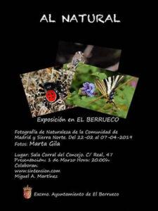 ElBerruecomartaGilafeb19