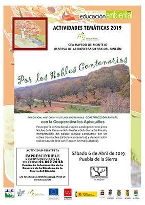 PueblaPaseo6abril