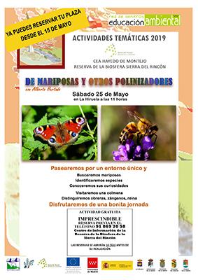 HiruelaMariposasmay19