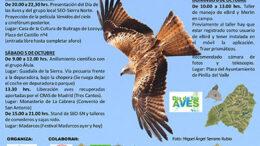 AvesDia19