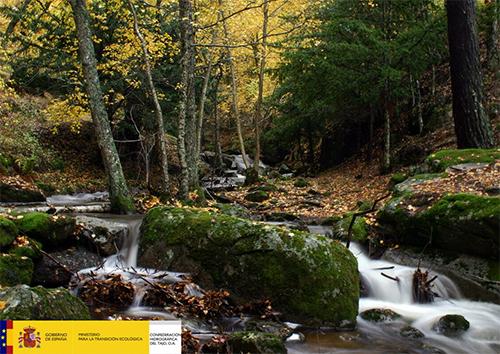 TajoConcursoFotografa19