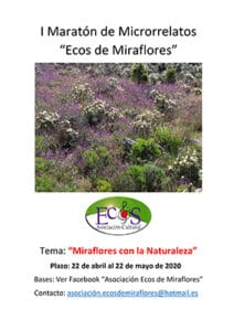 EcosMicrorelatos11may